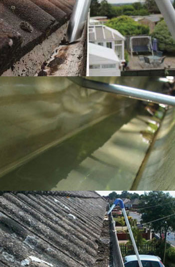 high-reach-gutter-clearing-cleaners-in-whitbourne-herefordshire